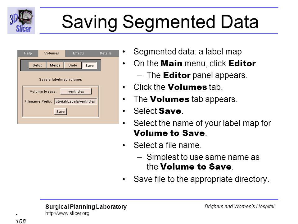 Saving Segmented Data Segmented data: a label map