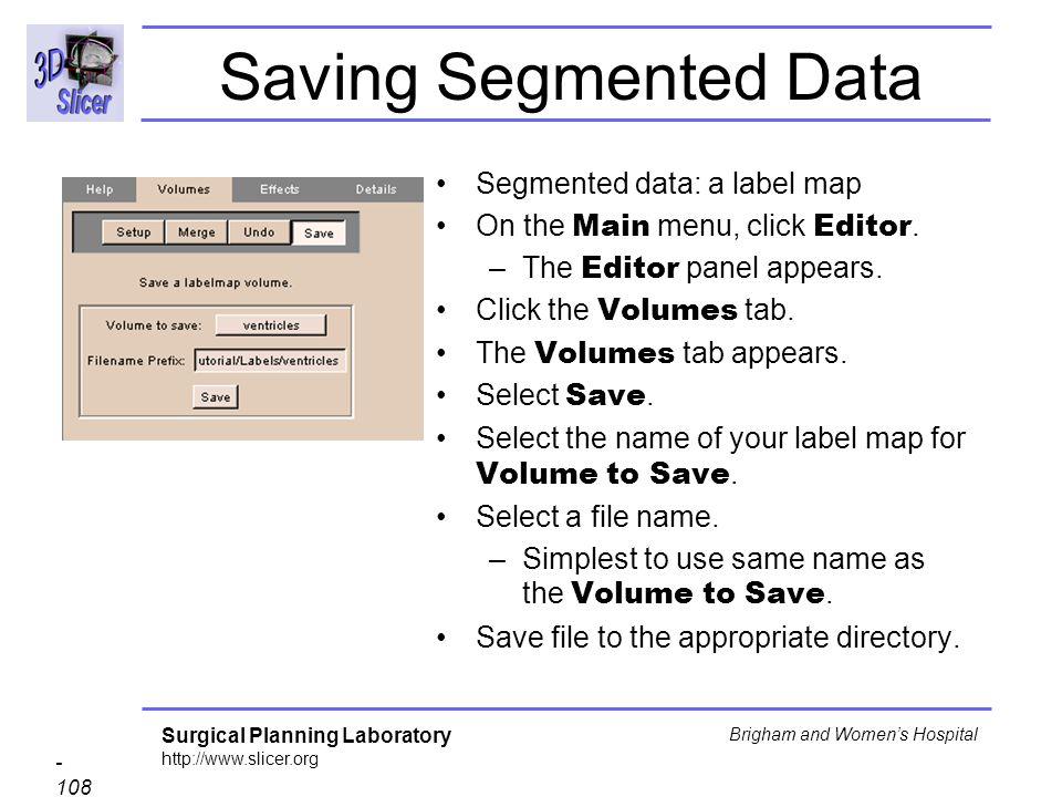 Saving Segmented Data Segmented data: a label map