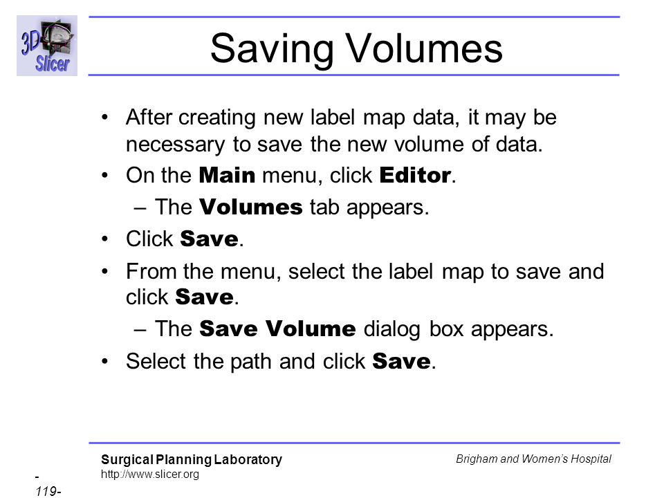 Saving Volumes After creating new label map data, it may be necessary to save the new volume of data.
