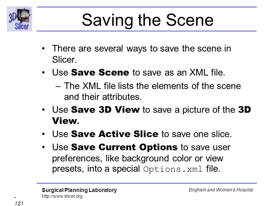 Saving the Scene There are several ways to save the scene in Slicer.