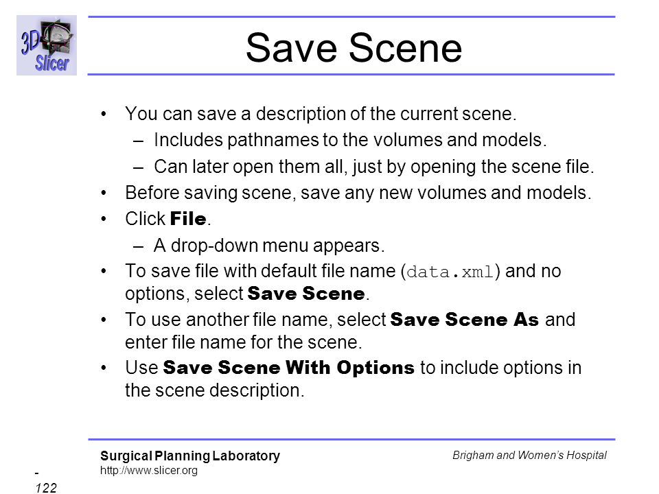 Save Scene You can save a description of the current scene.