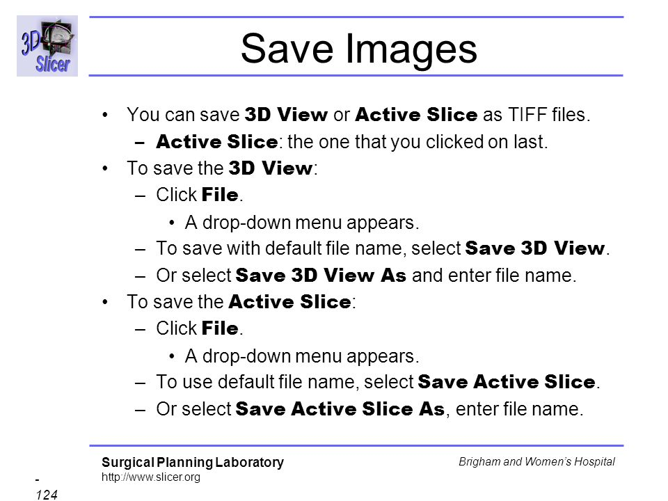 Save Images You can save 3D View or Active Slice as TIFF files.