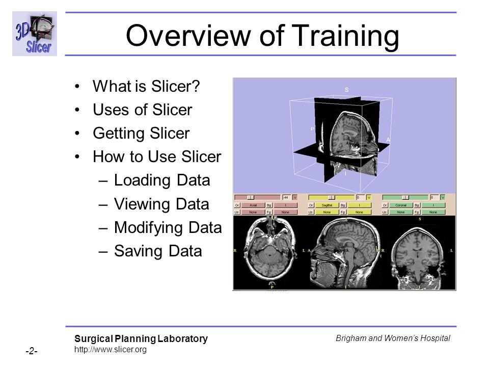 Overview of Training What is Slicer Uses of Slicer Getting Slicer
