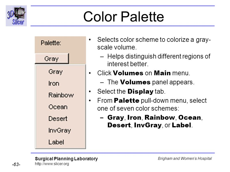 Color Palette Selects color scheme to colorize a gray-scale volume.