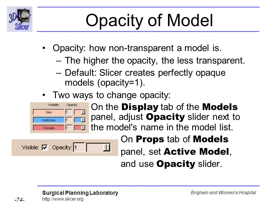 Opacity of Model Opacity: how non-transparent a model is.