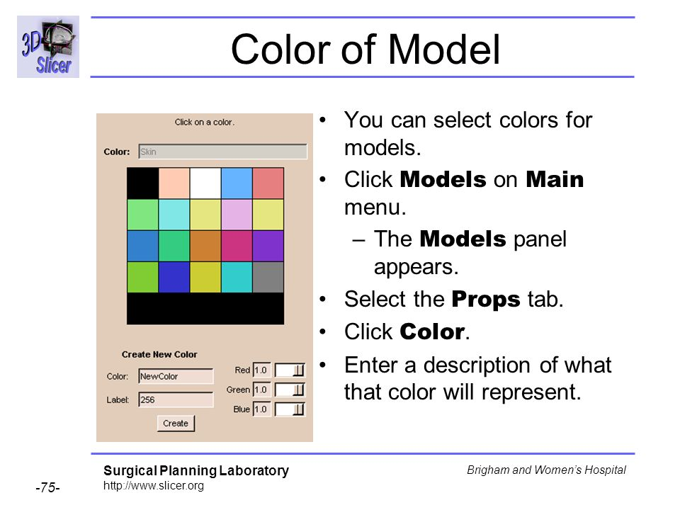 Color of Model You can select colors for models.