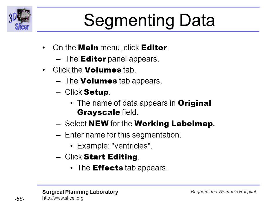 Segmenting Data On the Main menu, click Editor.