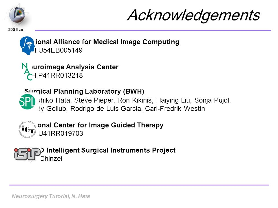 Acknowledgements National Alliance for Medical Image Computing