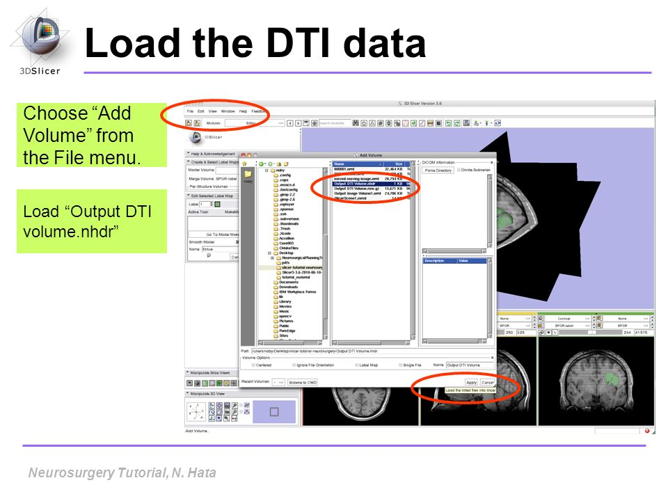 Load the DTI data Choose Add Volume from the File menu.
