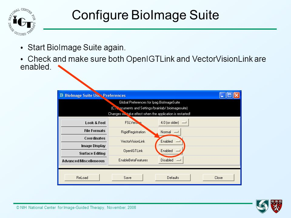 Configure BioImage Suite