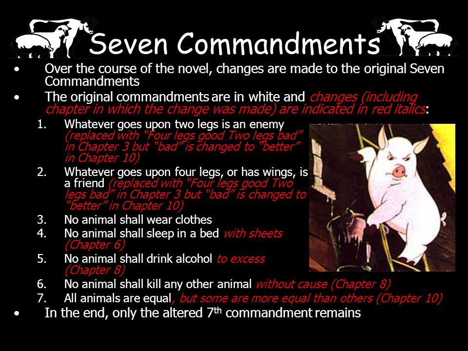the seven commandments in animal farm Free essay: animal farm: seven commandments without law and order, it is nearly proven that civilization will fail because of this, snowball saw it.
