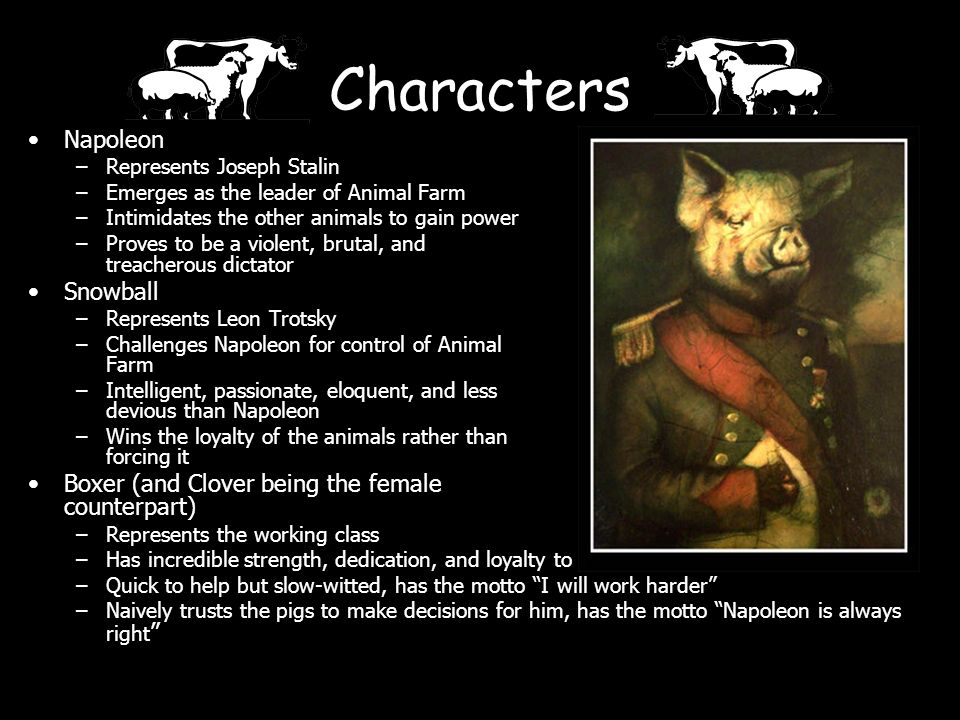 characterization of animal farm characters squealer Animal farm: character profiles  in animal farm, squealer, like the newspaper,  is one of orwell's most elusive and intriguing characters on animal farm.