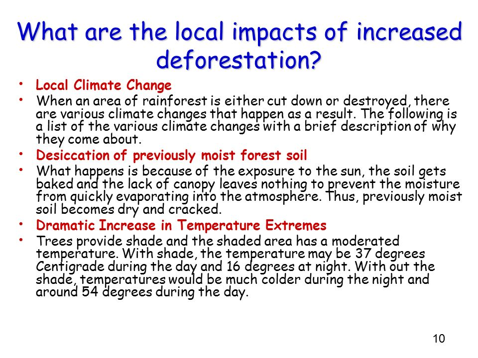 What are the local impacts of increased deforestation