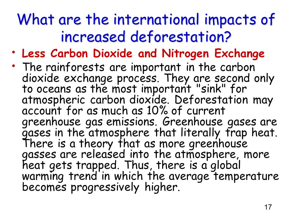 What are the international impacts of increased deforestation