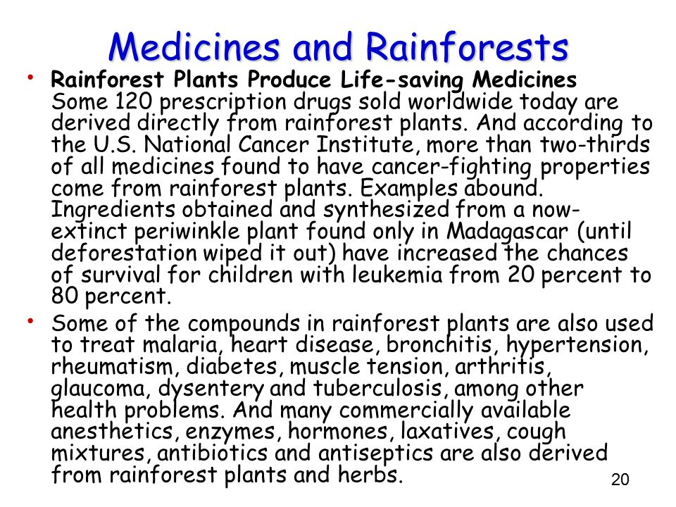 Medicines and Rainforests