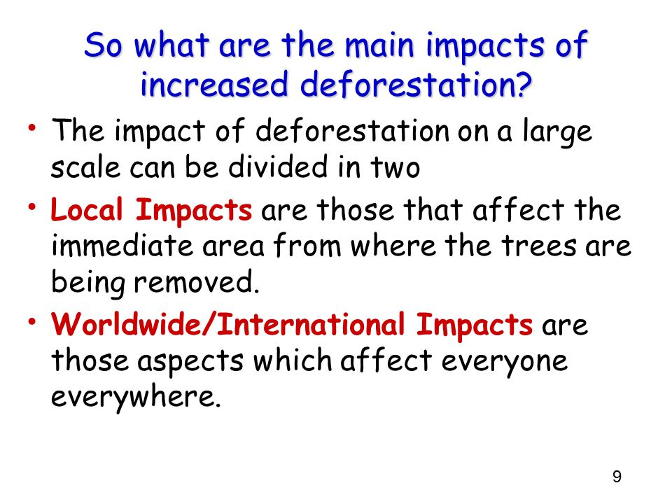 So what are the main impacts of increased deforestation