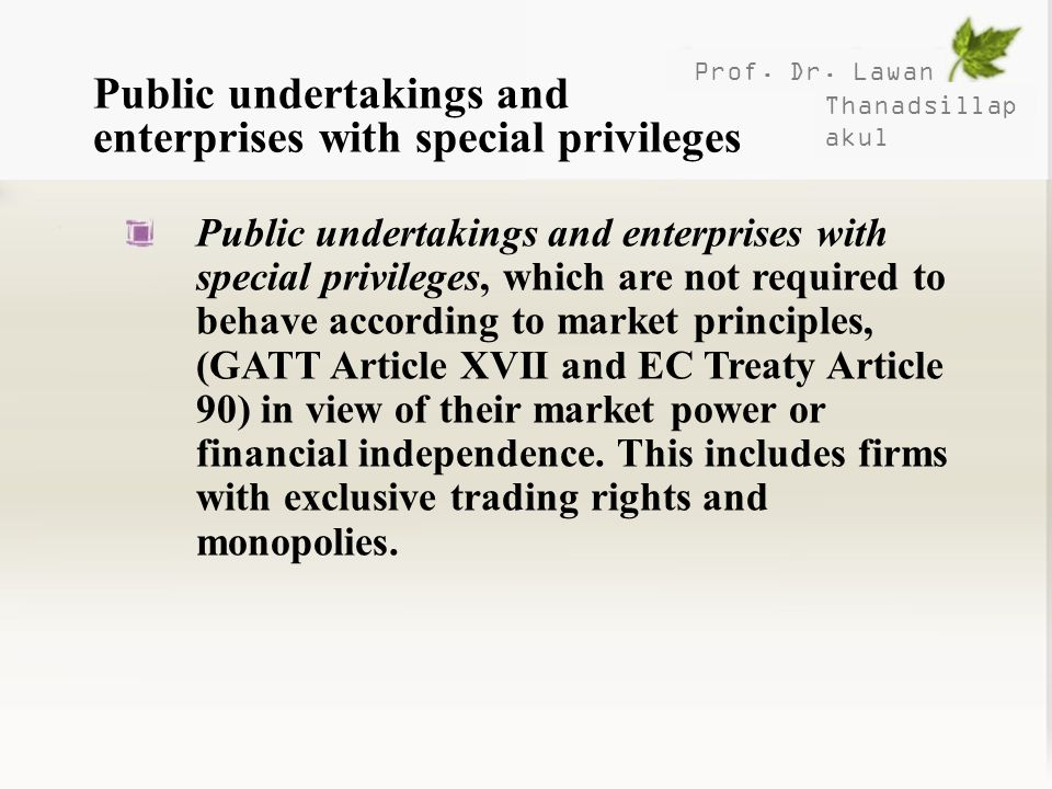 Public undertakings and enterprises with special privileges