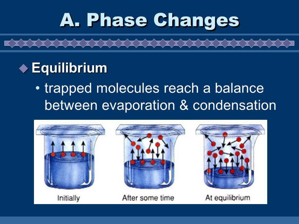 A. Phase Changes Equilibrium