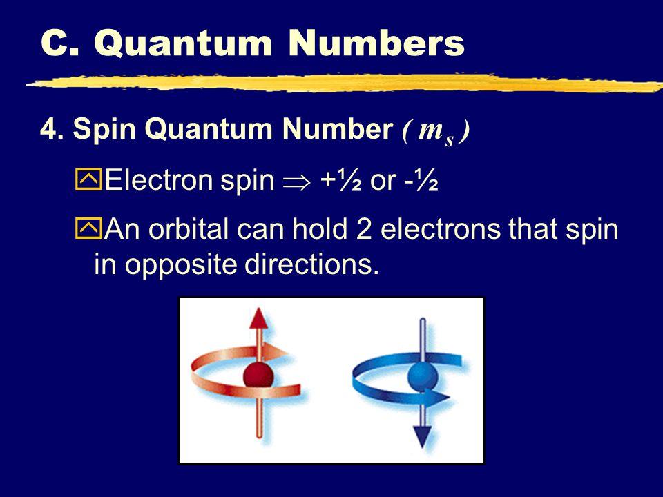 C. Quantum Numbers 4. Spin Quantum Number ( ms )