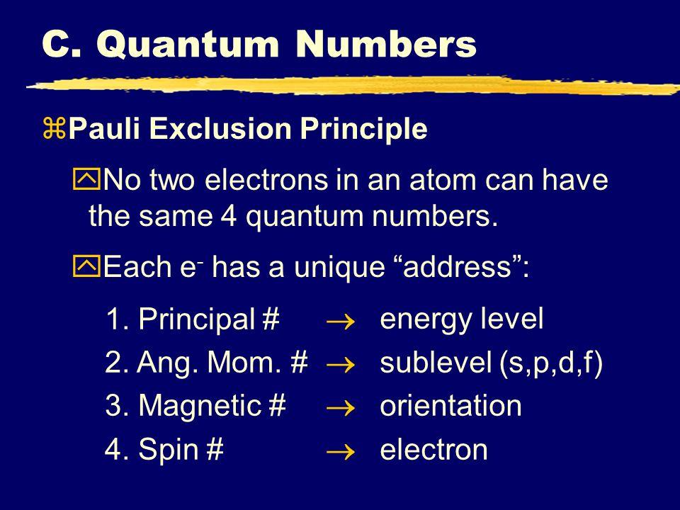 C. Quantum Numbers Pauli Exclusion Principle