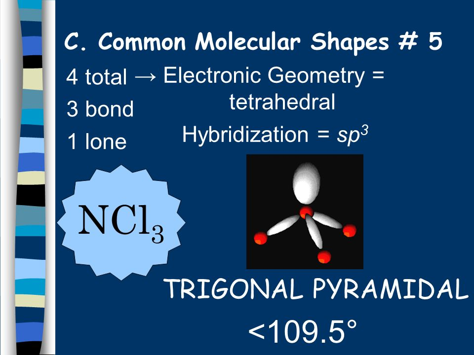 C. Common Molecular Shapes # 5