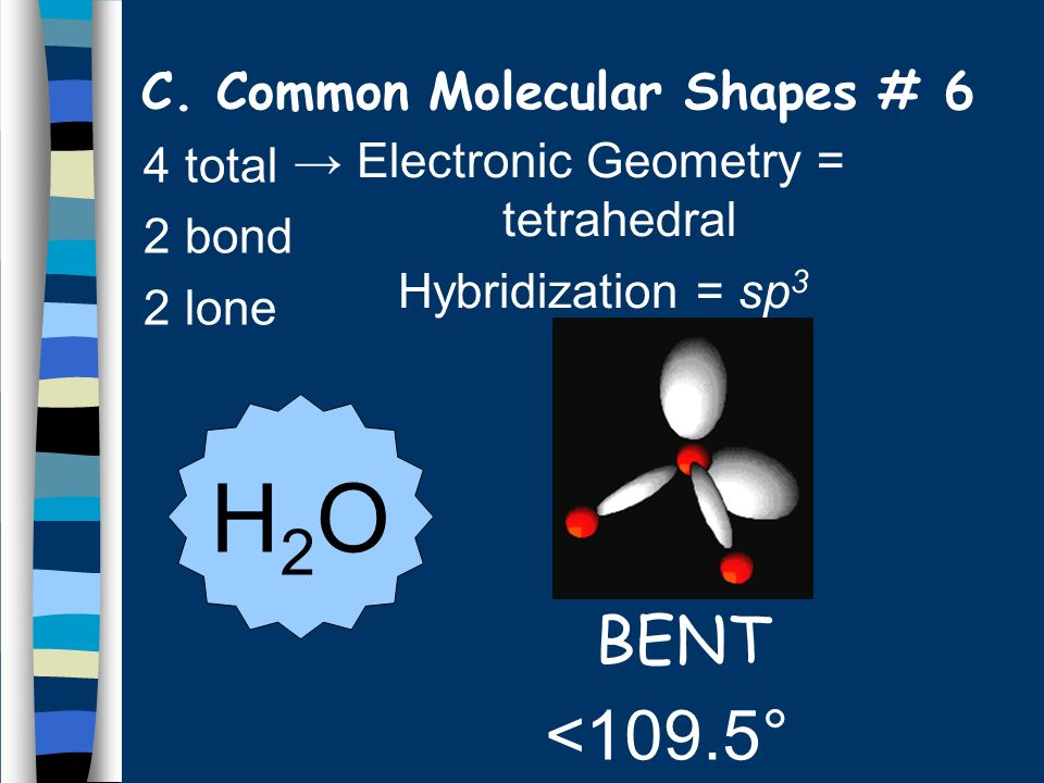 C. Common Molecular Shapes # 6
