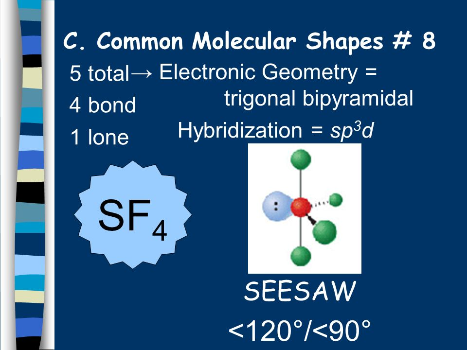 C. Common Molecular Shapes # 8