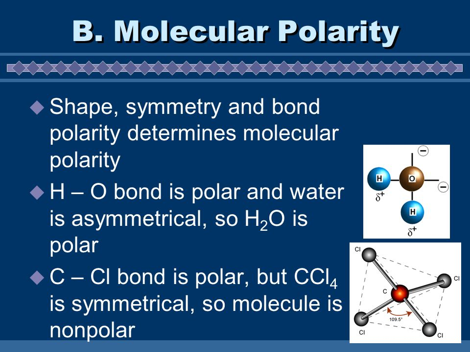 B. Molecular Polarity Shape, symmetry and bond polarity determines molecular polarity.