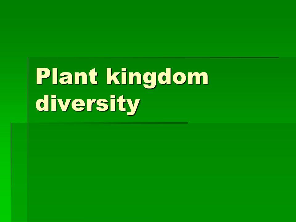 Plant kingdom diversity