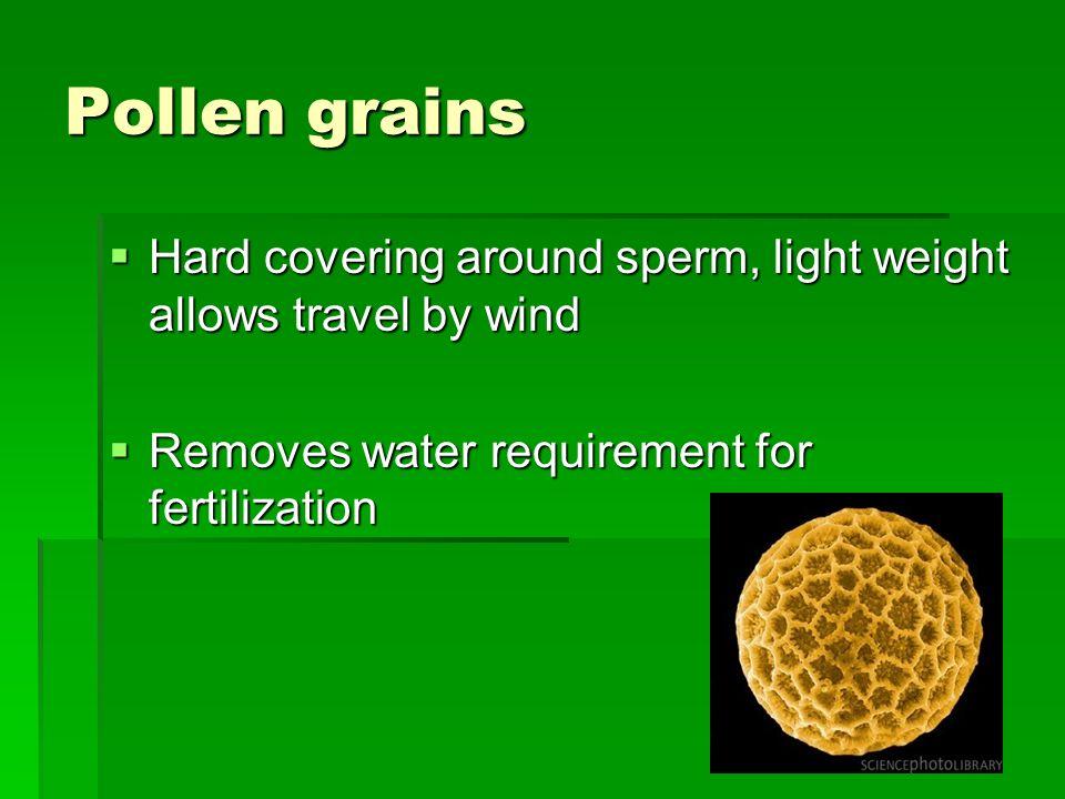 Pollen grains Hard covering around sperm, light weight allows travel by wind.
