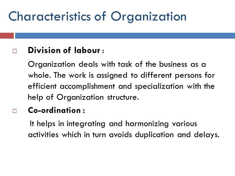 Characteristics of Organization