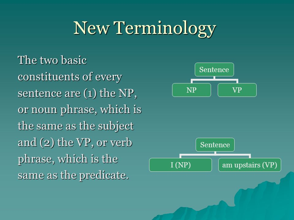 New Terminology The two basic constituents of every