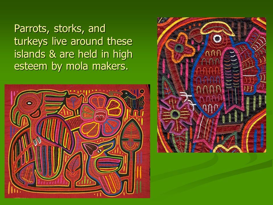 Parrots, storks, and turkeys live around these islands & are held in high esteem by mola makers.