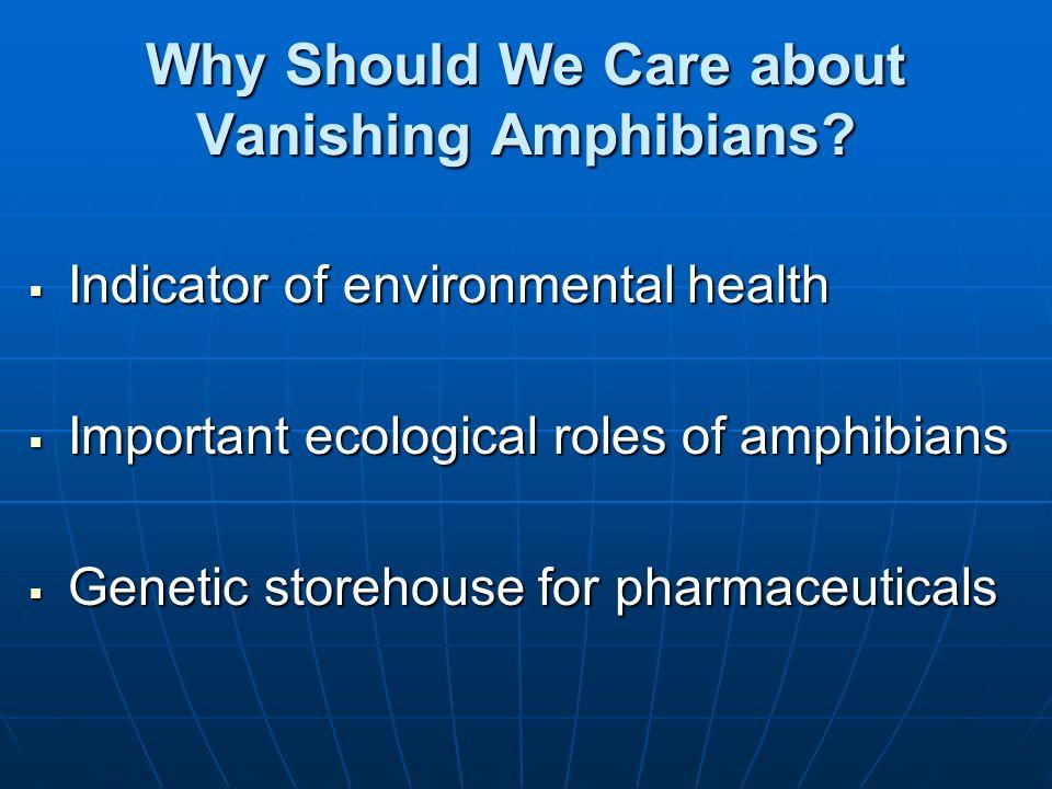 Why Should We Care about Vanishing Amphibians