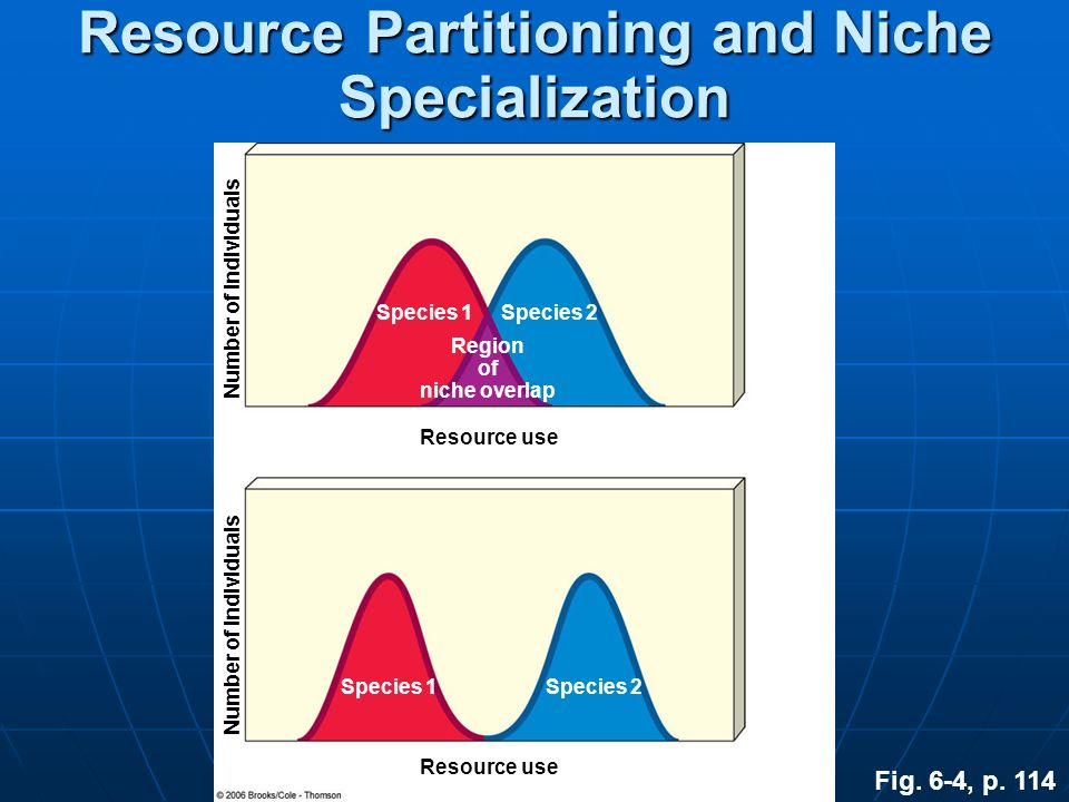 Resource Partitioning and Niche Specialization