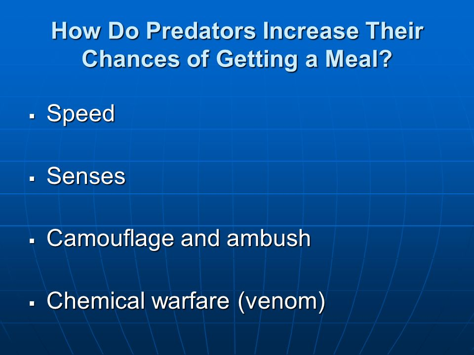 How Do Predators Increase Their Chances of Getting a Meal