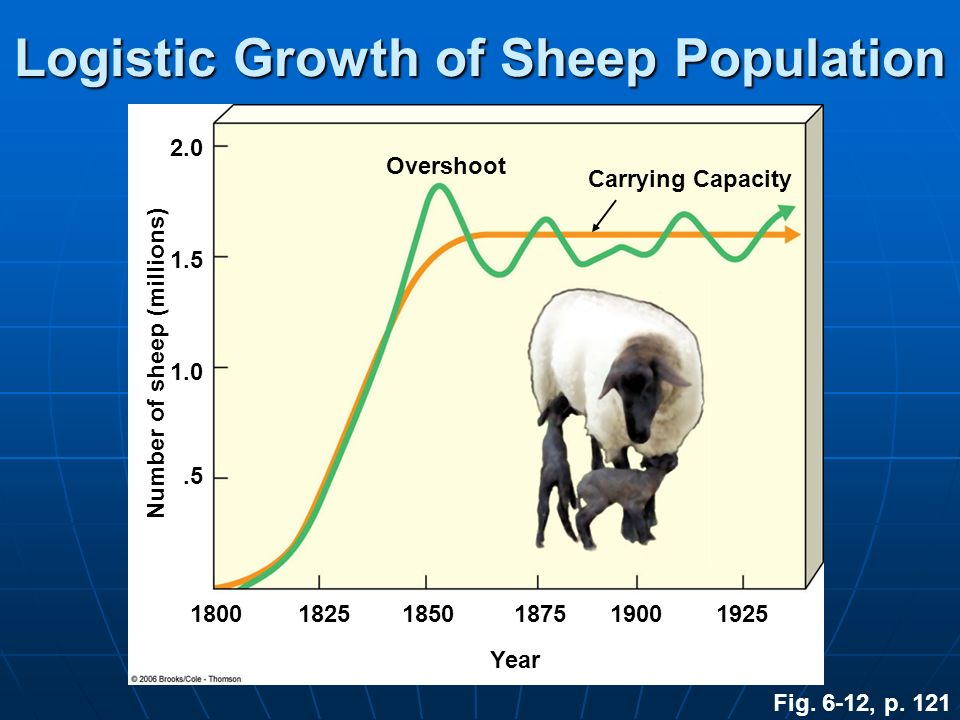 Logistic Growth of Sheep Population