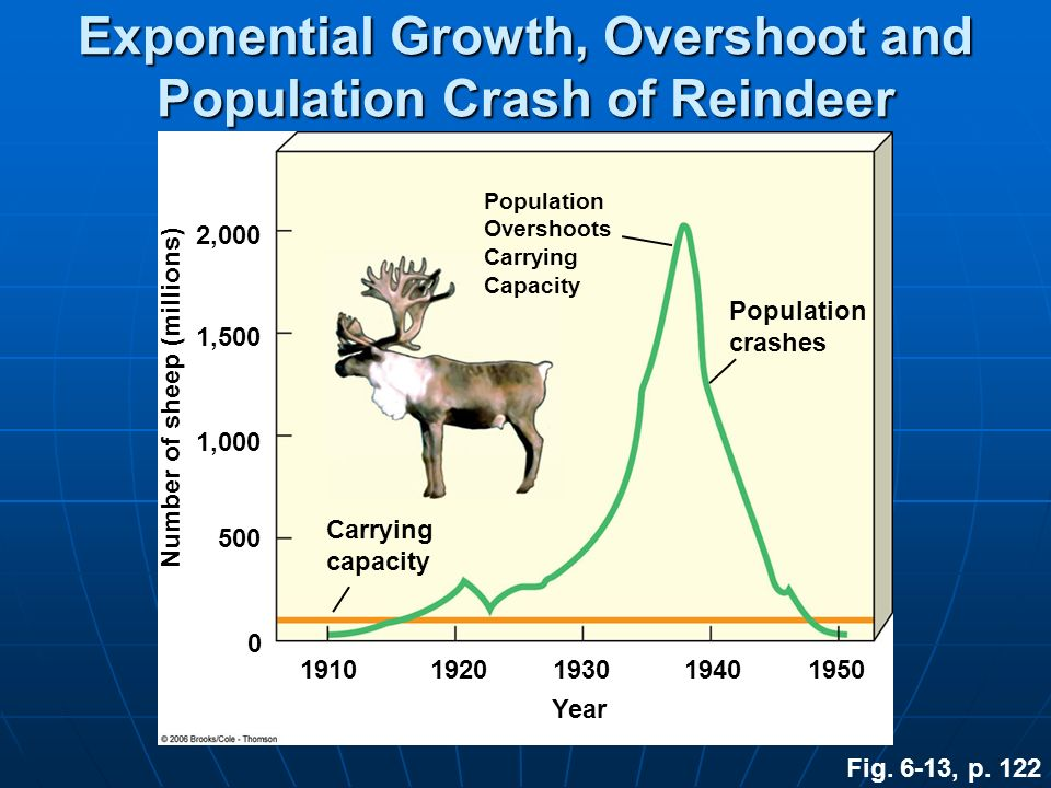 Exponential Growth, Overshoot and Population Crash of Reindeer