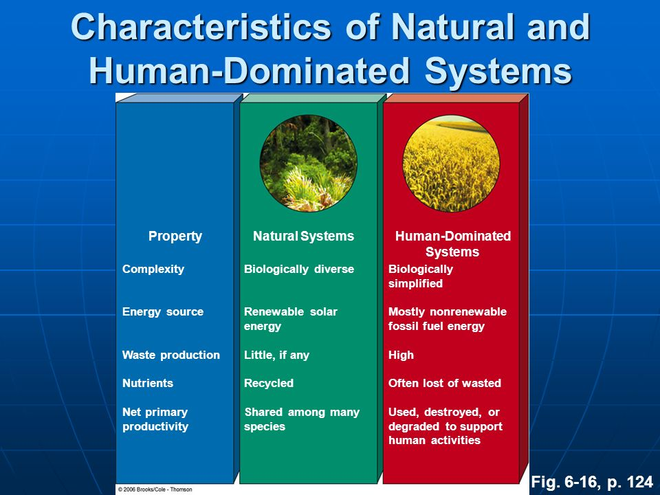 Characteristics of Natural and Human-Dominated Systems