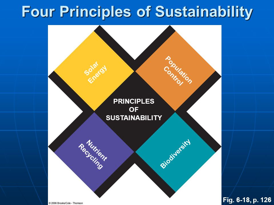 Four Principles of Sustainability