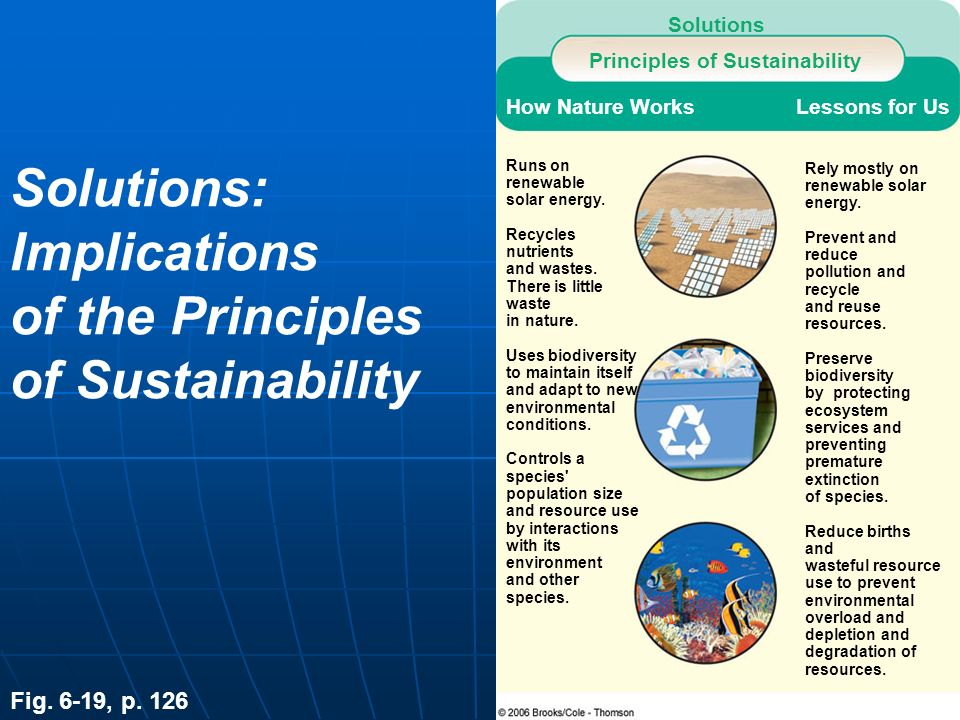 Solutions: Implications of the Principles of Sustainability