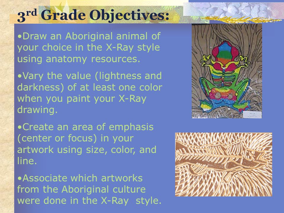 3rd Grade Objectives: Draw an Aboriginal animal of your choice in the X-Ray style using anatomy resources.
