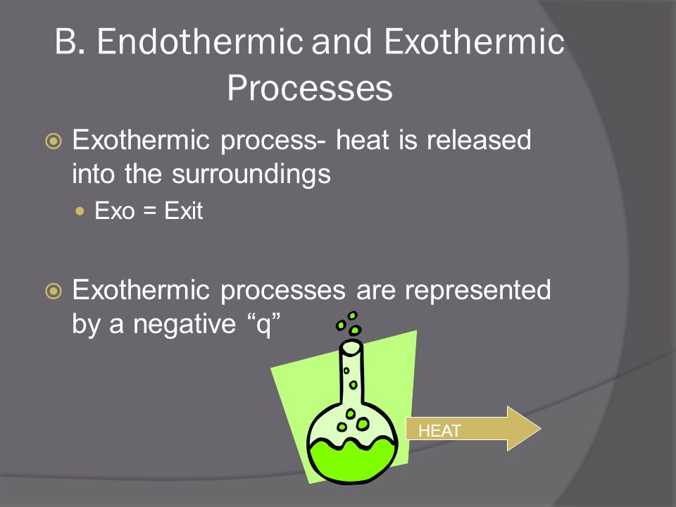 B. Endothermic and Exothermic Processes