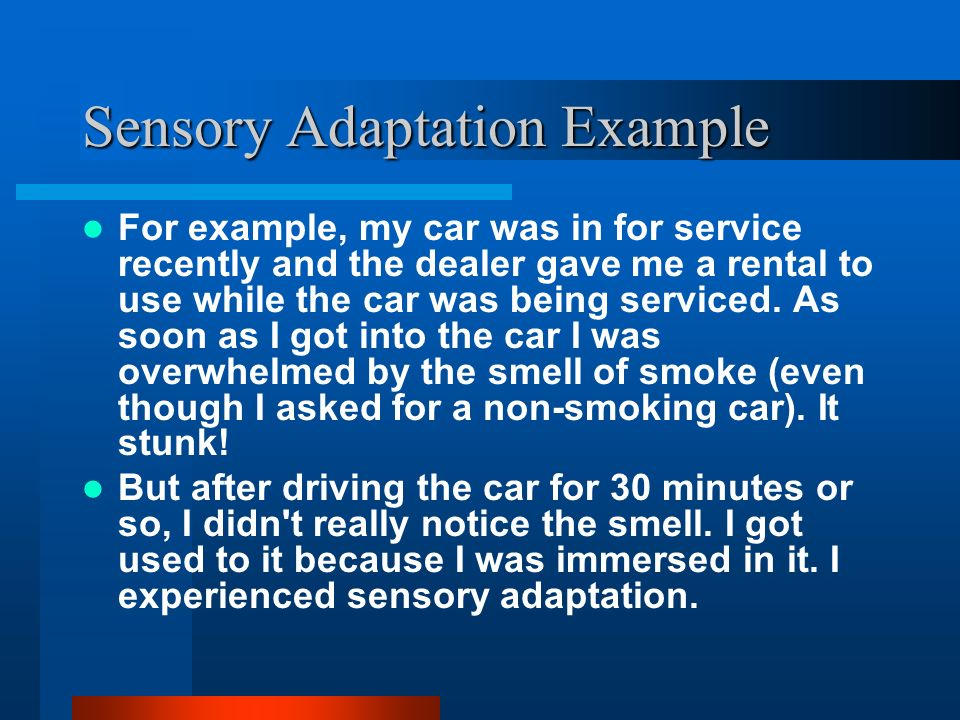 Sensory Adaptation Example