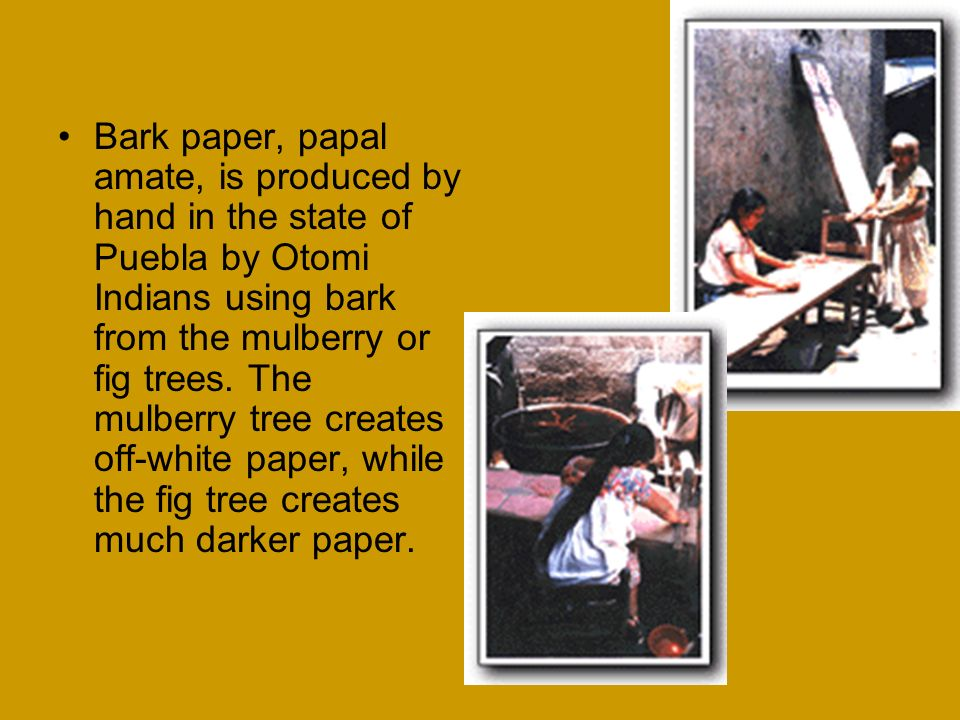 Bark paper, papal amate, is produced by hand in the state of Puebla by Otomi Indians using bark from the mulberry or fig trees.