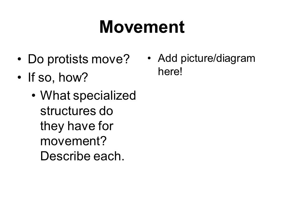 Movement Do protists move If so, how