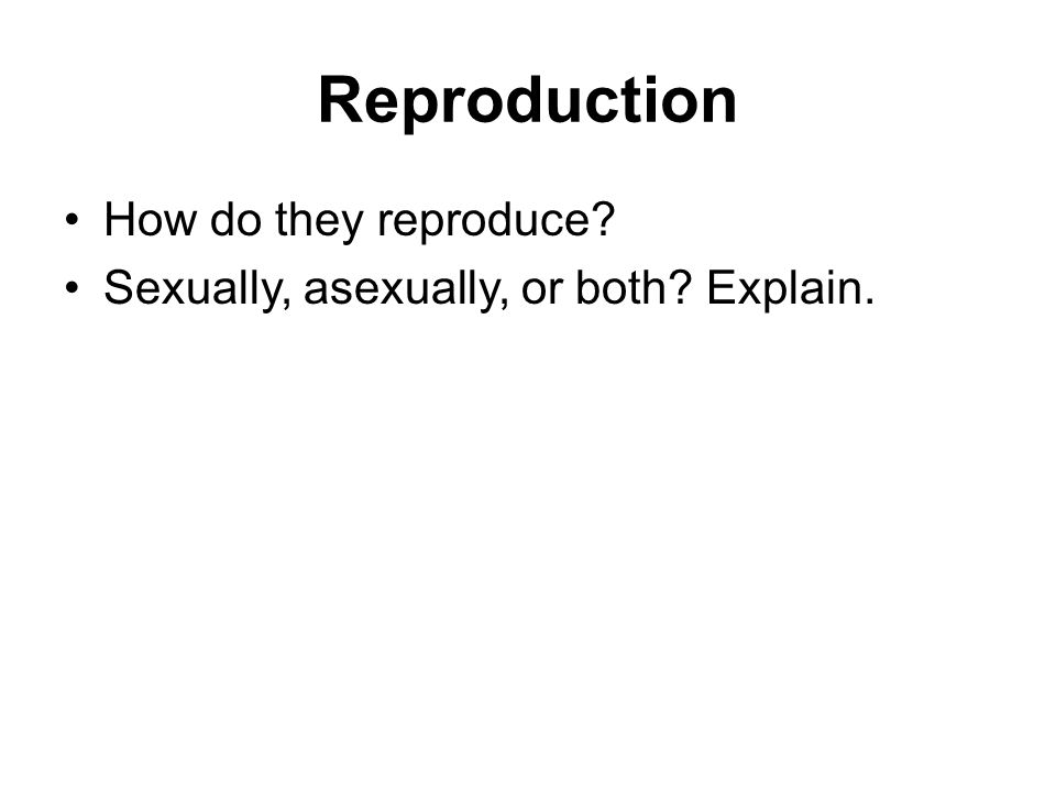 Reproduction How do they reproduce