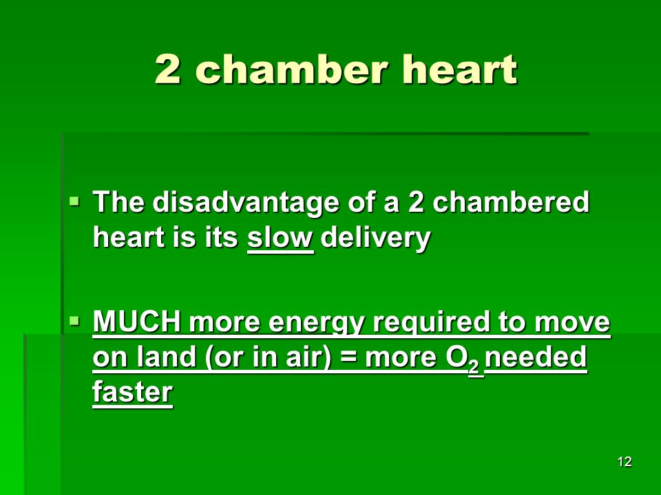 2 chamber heart The disadvantage of a 2 chambered heart is its slow delivery.