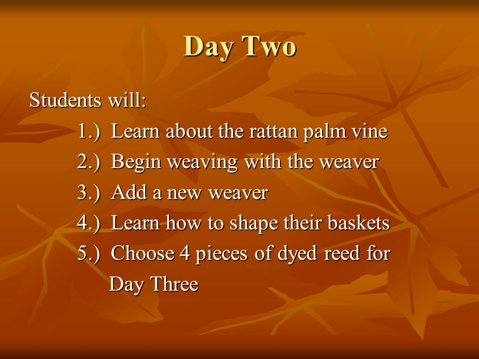 Day Two Students will: 1.) Learn about the rattan palm vine