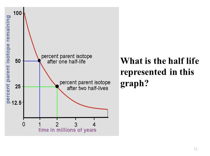 What is the half life represented in this graph